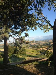Villa San Vitale ~ Marche Italy ( Ancona) - San Lorenzo in Campo vacation rentals