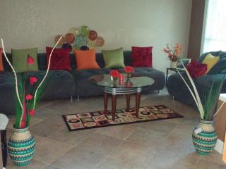 Vacation retreat; home away from home in Tampa, FL - Tampa vacation rentals