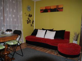 Romantic 1 bedroom Szczyrk Villa with Internet Access - Szczyrk vacation rentals