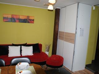 Beautiful 1 bedroom Szczyrk Villa with Internet Access - Szczyrk vacation rentals