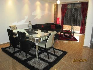 Lovely quiet 2 bedroom very brand new apartment - Cairo vacation rentals