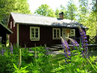 Skogstuga, komfortables Sommerhaus - Holsbybrunn vacation rentals