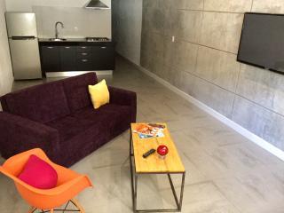 Pilitias Apartment 123 - Puerto Vallarta vacation rentals