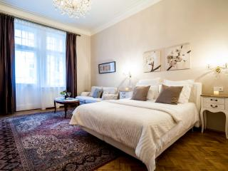 Classy 3 Bedroom+ 3 Bath Family Apt - Prague vacation rentals