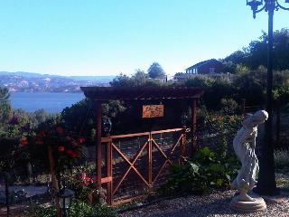 Charming Lake View House in a garden setting - Kelseyville vacation rentals