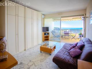 STUDIO WITH AIR CONDITIONING, TERRACE AND PARKING - Juan-les-Pins vacation rentals