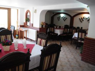 Nice Villa with Internet Access and Wireless Internet - Gura Humorului vacation rentals