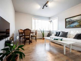 Comfortable Condo with Internet Access and Wireless Internet - Reykjavik vacation rentals