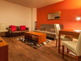 1 bedroom Condo with Internet Access in Bansko - Bansko vacation rentals
