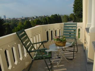 Centrale di charme in Villa Itala'800 vista unica grande confort wifi parking 1p - Turin vacation rentals