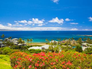 Stunning Ocean Views! Views! Lowest Rates! AC too - Lahaina vacation rentals