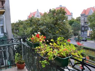 Sunny spacious luxury, City Center - Szczecin vacation rentals