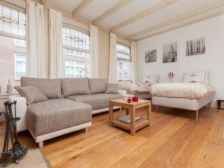 CENTER: Family Room with Fireplace - Amsterdam vacation rentals
