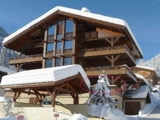 Nice Condo with Short Breaks Allowed and Long Term Rentals Allowed (over 1 Month) - La Clusaz vacation rentals