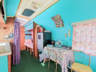 Vintage  Airstream near Everglades - Homestead vacation rentals