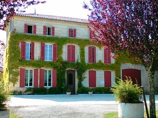 Nice Chateau with Internet Access and Outdoor Dining Area - Rouffignac vacation rentals