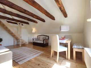 Nice 2 bedroom Condo in Gruenendeich - Gruenendeich vacation rentals