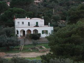 Piano Terra  in bellissima villa in riva al mare - Isola Del Giglio vacation rentals