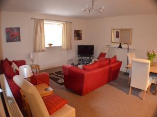 Nice 3 bedroom Condo in Montrose - Montrose vacation rentals
