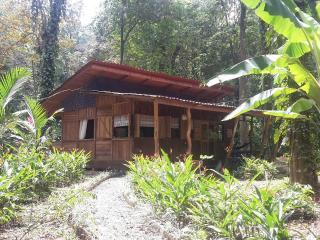 Private Double Bedroom in Jungle Cabin - Puerto Viejo de Talamanca vacation rentals