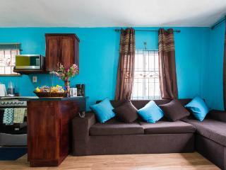 TropiCasa I - 1BD/1.5BR - Kingston - Kingston vacation rentals