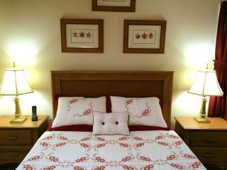 Private Queen Suite, Kitchenette, Sky Lit Bath - Bethlehem vacation rentals