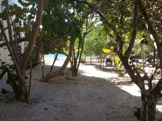 Cozy 2 bedroom Condo in Progreso - Progreso vacation rentals