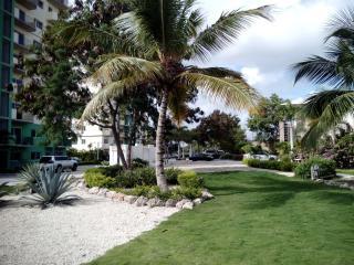 Bright Condo with Television and Balcony - La Romana vacation rentals
