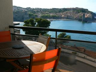 Romantic 1 bedroom Condo in Collioure - Collioure vacation rentals