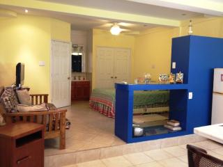 Cozy Studio Apartment in Belize City - Belize City vacation rentals