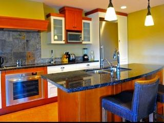 Canmore Luxury Impressive 3 Bedroom Premium Penthouse - Canmore vacation rentals