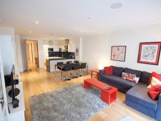 Perfect Long Term Luxury Apt. - Dublin vacation rentals