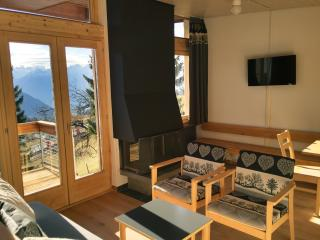 Leysin Lodge Bungalow Cosy chalet - Leysin vacation rentals