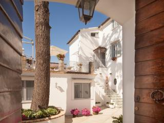 Bright & comfortable with Mt Vesuvius views - Sant'Agata sui Due Golfi vacation rentals