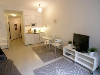 Studio apartment in Kluuvi - Helsinki vacation rentals