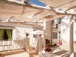 Beautiful courtyard apartment - sleeps 4 - Sant'Agata sui Due Golfi vacation rentals