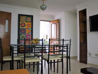 Lindo Apartamento con el Mejor Clima....! - Ibague vacation rentals