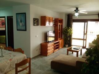 Comfortable 3 bedroom Condo in Estepona - Estepona vacation rentals