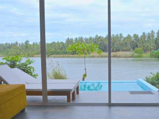 Standard Villa with Infinity-Edge Plunge Pool - Negombo vacation rentals