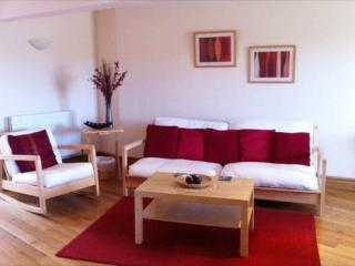 1 bedroom Condo with Internet Access in Llansteffan - Llansteffan vacation rentals