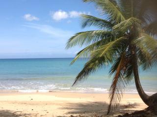 Villa Playa at the beach, sleeps 8-22 - Aguada vacation rentals