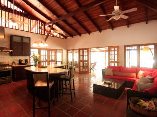 Luxury Beachfront Estate, NEW A/C Throughout, House Cleaning,  Concierge, WIFI - Santa Teresa vacation rentals