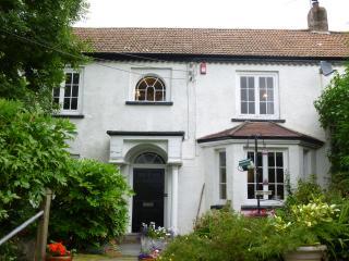 Eighteenth century traditional house - Bideford vacation rentals