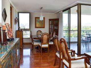 Fabulous Apt with view to Country Club - Santiago vacation rentals