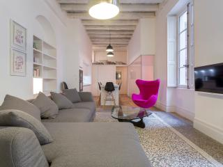 Beautiful 3 bedroom Lyon Apartment with Internet Access - Lyon vacation rentals