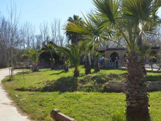 El Arrozal.Private pool and garden. Beach5min away - Aljaraque vacation rentals
