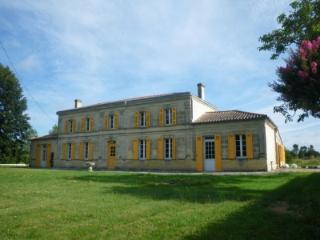 Maison de Maître near Bordeaux - Saugon vacation rentals