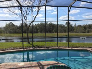 Beautiful home with pool and private view of gator - Clermont vacation rentals