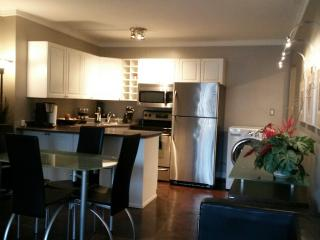 Beautiful 2 bedroom Apartment in Edmonton - Edmonton vacation rentals