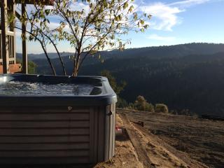 Nice House with Internet Access and Dishwasher - Boulder Creek vacation rentals